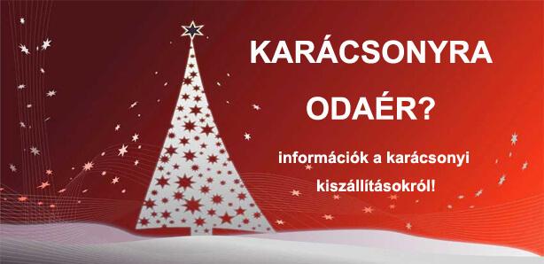 Információk a Karácsonyi kiszállításokról! 685e669291